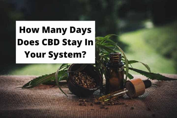 How Many Days Does CBD Stay In Your System