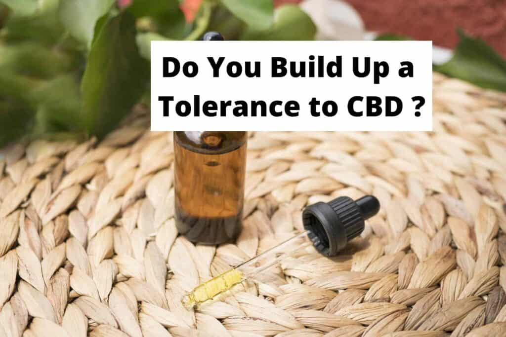 Do You Build Up a Tolerance to CBD