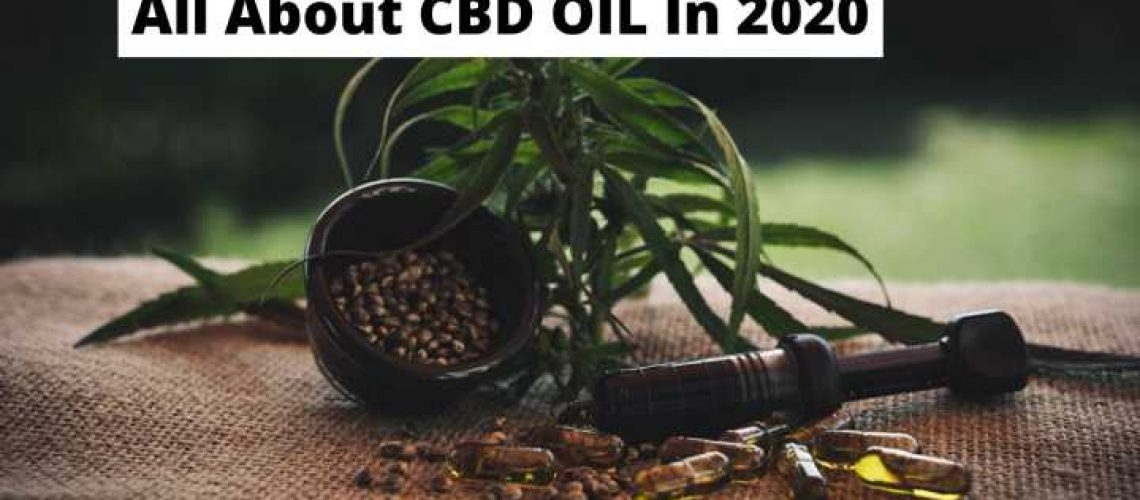 All About CBD OIL In 2020